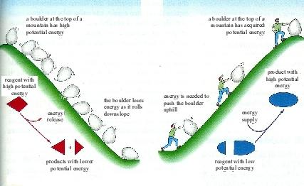 hifi-eso-endo-processes